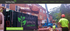 best tree solutions in sydney
