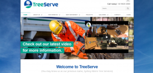 another tree services company in sydney