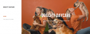 dogcity dog groomers in adelaide