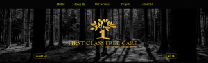 first class tree care in canberra
