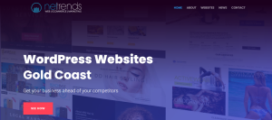 netrends web design in gold coast