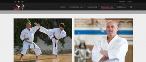 pollet's martial arts classes in newcastle