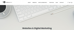whitecrow digital marketing in newcastle
