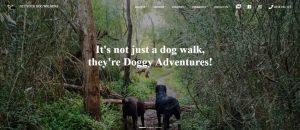 get your dog walking in melbourne