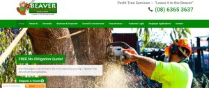 beaver tree services in perth