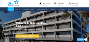 star painters adelaide