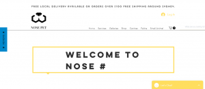 nose pet groomers in sydney