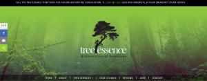 tree essence in gold coast