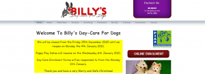 billy's day care for dogs in perth