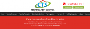 complete termite solutions in gold coast