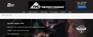 the pest company in gold coast