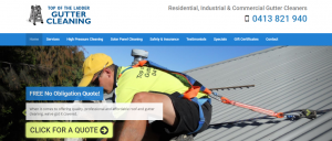 top of the ladder gutter cleaning in perth