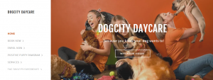 dogcity daycare in adelaide