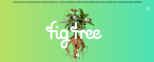 Fig Tree digital marketing in Adelaide
