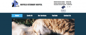 Mayfield Veterinary Hospital in Newcastle