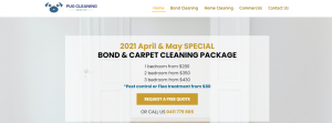 Pug Cleaning Services in Brisbane
