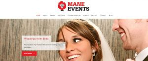 Mane Events DJ Hire in Newcastle
