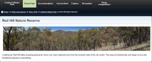 Red Hill Nature Reserve Hiking Trails in Canberra