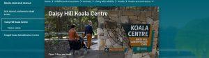 Daisy Hill Koala Centre in Brisbane